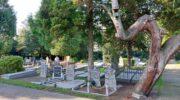 Rust keert terug op de begraafplaats van Nijkerk